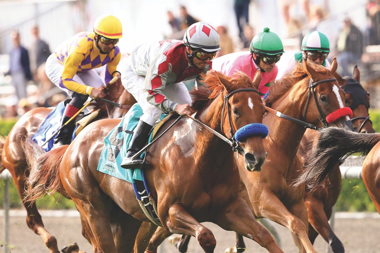 santa anita horse racing los angeles