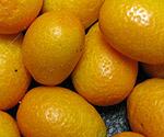 kumquat_b