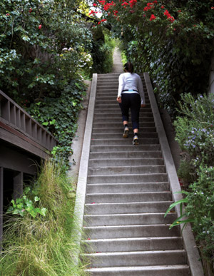 Stair Walks: Rustic Canyon