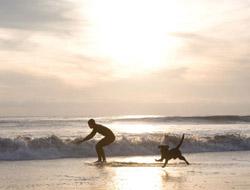 LA's Best Beaches