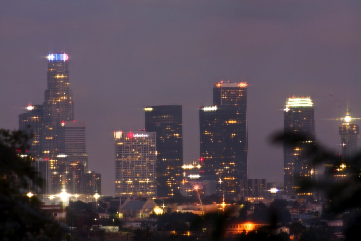 Blooming, buzzing Los Angeles