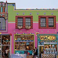Wacko/Soap Plant