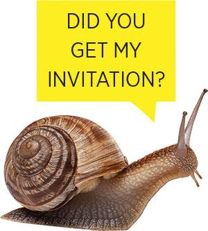 mam_snail