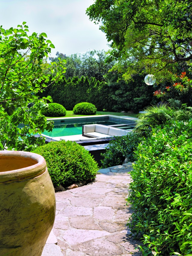 """The Karmins originally trimmed the trees to get the ocean view. They've since stopped. """"Now we love seeing the green,"""" says Beth. The hard angles of the pool and lounge area are offset by softly rounded bushes."""