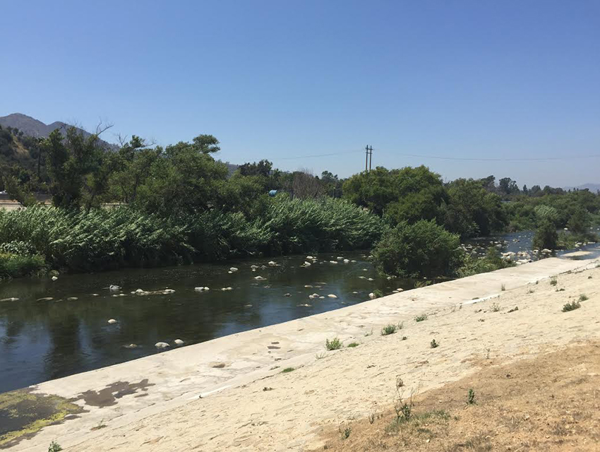 The view to the north from the Los Angeles River Equestrian Trial