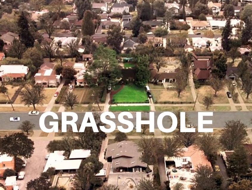 grasshole