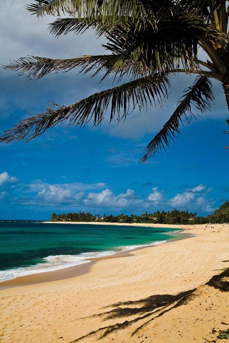 hawaii_august2015_02