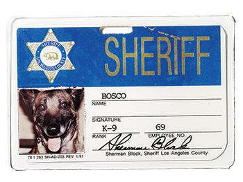 Identification card for his k9 partner, Bosco