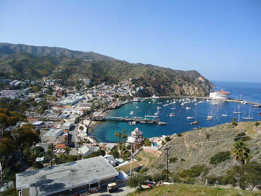 The Ultimate Guide To Catalina Island Los Angeles Magazine