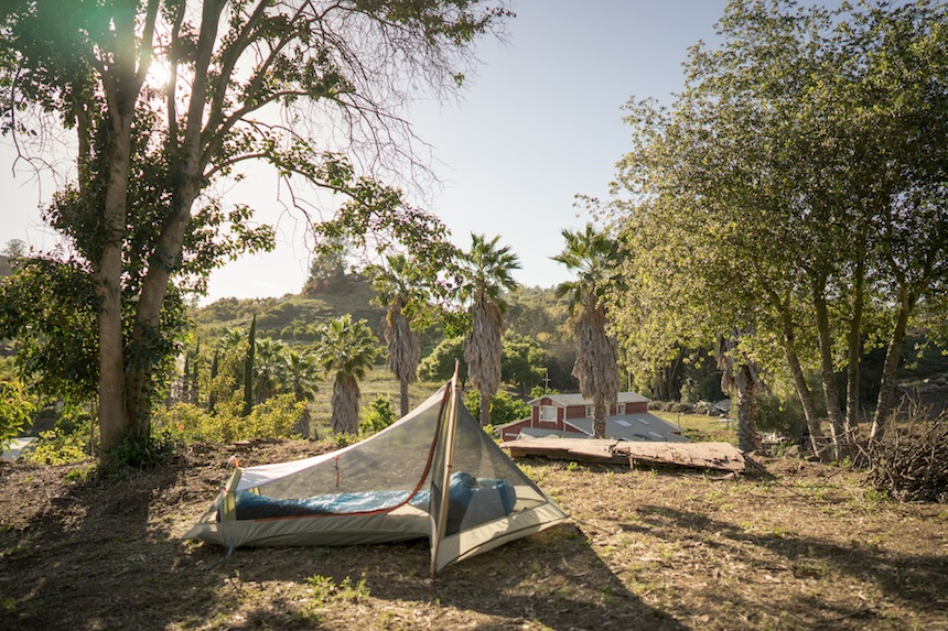 Blueberry Farm Tent Camping
