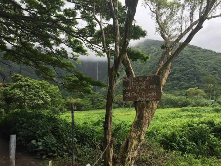 _Hawaii1_Credit-Hawaiian-Walkways