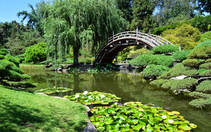 Where To Find L A S Most Exquisite Japanese Gardens