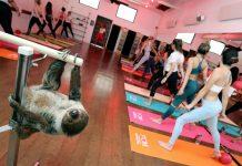 lola sloth barre class barre belle