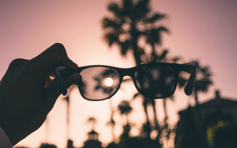 sunglasses palm tree los angeles things to do in la