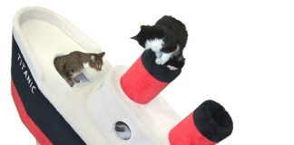 best cat trees los angeles