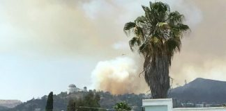 Griffith Park fire