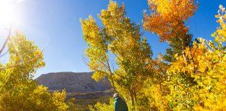 fall getaways mountain road trip los angeles