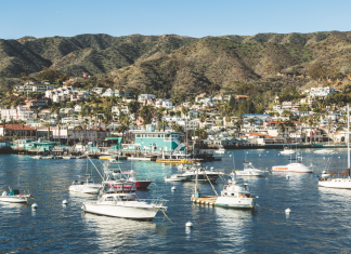 catalina island avalon day trip