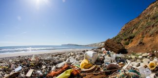 beach trash pollution coastal cleanup