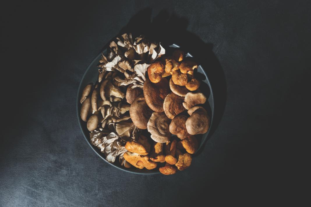 shiitake happens mushrooms
