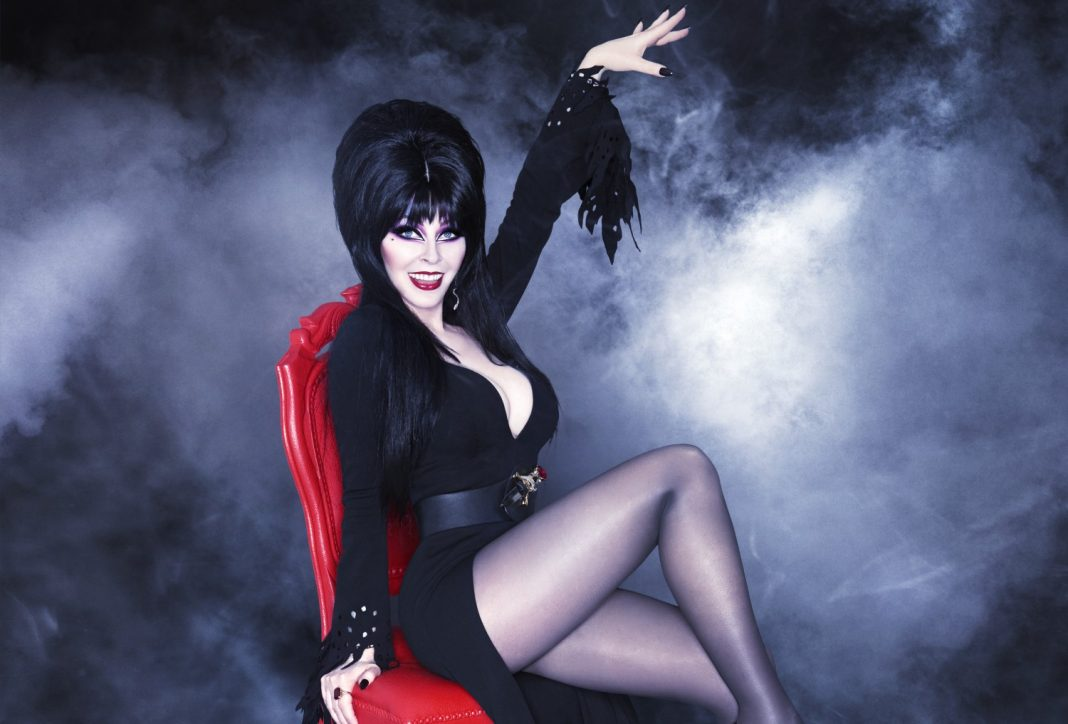 Elvira : Mistress of the Dark film