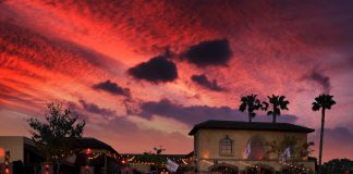 The Abbey Thanksgiving Christmas Sunset WeHo