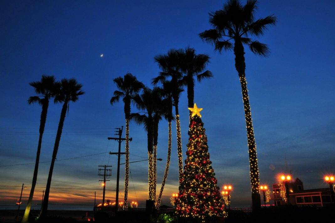 where to buy a christmas tree los angeles
