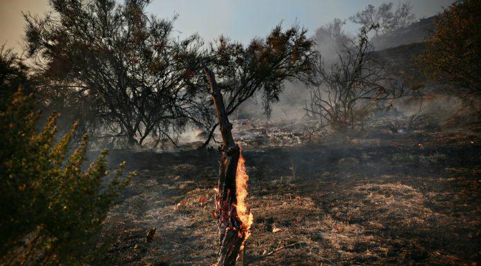 malibu rehab centers woolsey fire
