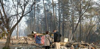 donald trump forrest fires forest fires