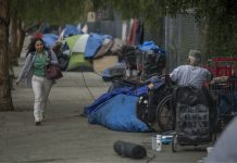 homeless typhus los angeles