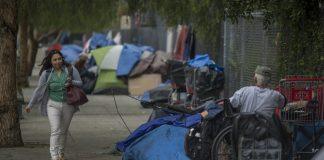 homeless typhus los angeles