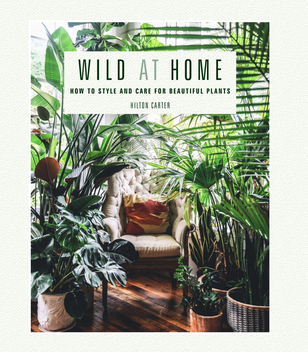 Wild at Home cover hilton carter