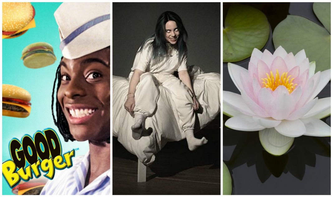 things to do this week billie eilish good burger lotus festival