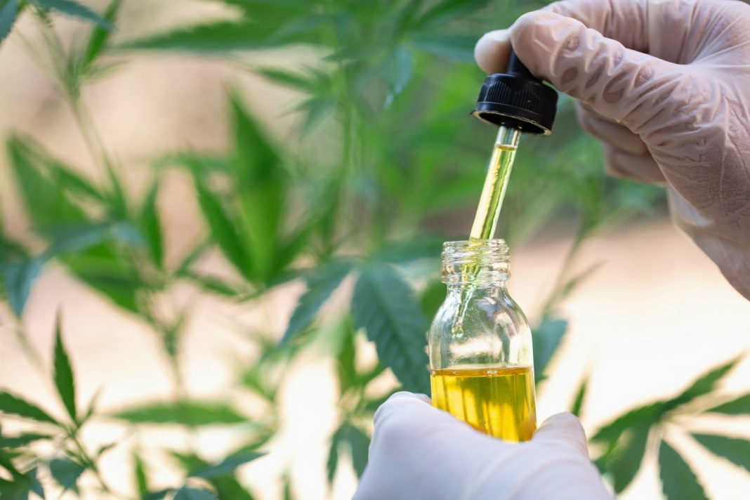 cbd regulation coronavirus cannabis