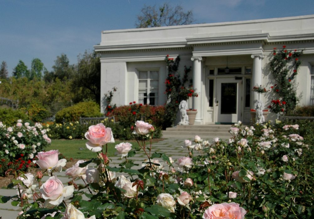 100 Fascinating Facts About The Huntington In Honor Of Its