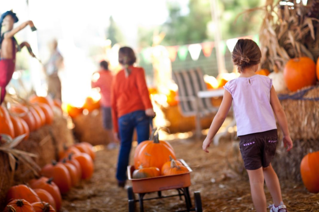 best fall festivals los angeles