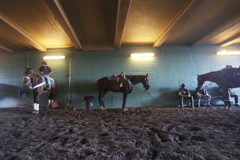 A Spate Of Horse Deaths At Santa Anita Has Activists And
