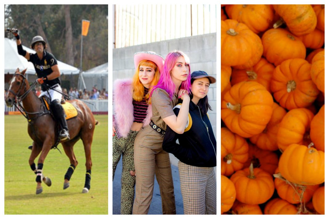 best things to do this weekend polo potty mouth hayride halloween