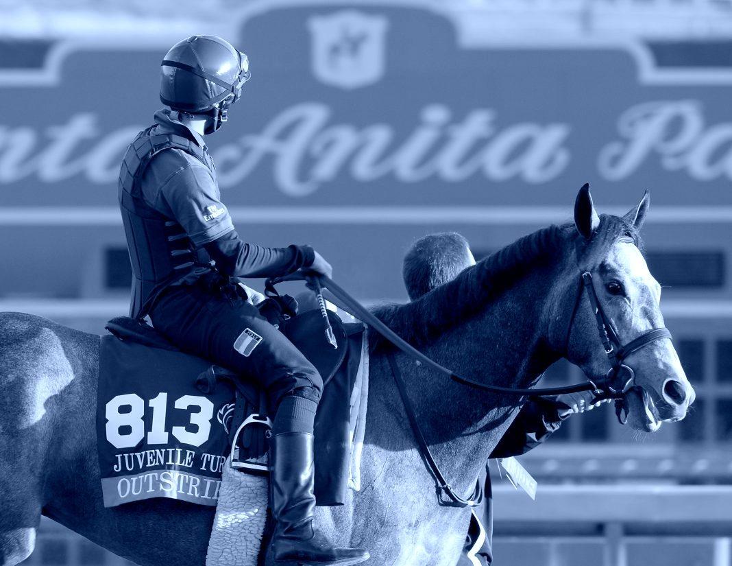 horse death santa anita