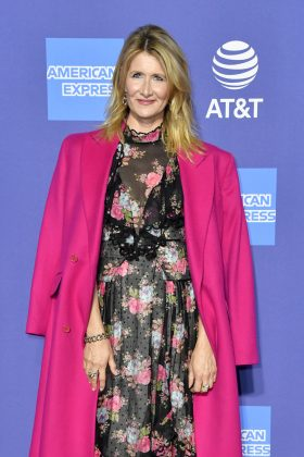 palm springs international film festival laura dern