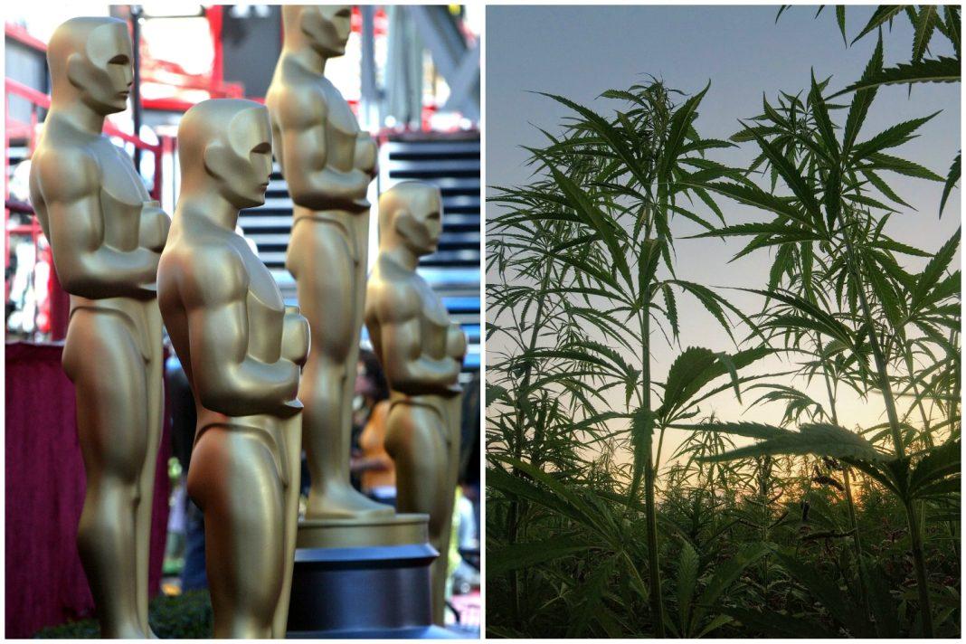 oscars cannabis