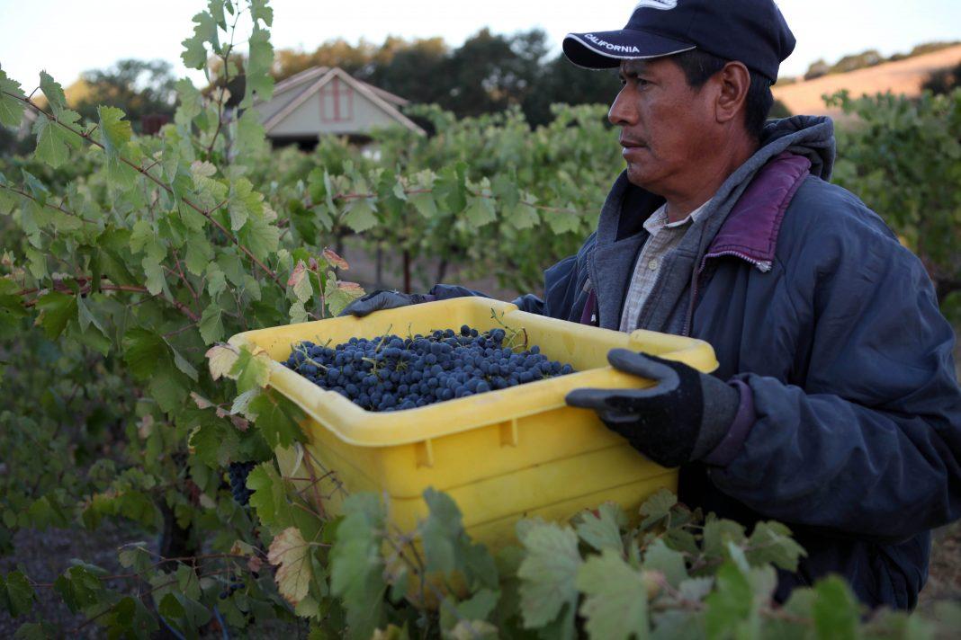 farm workers coronavirus