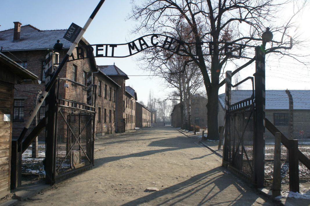 holocaust knowledge