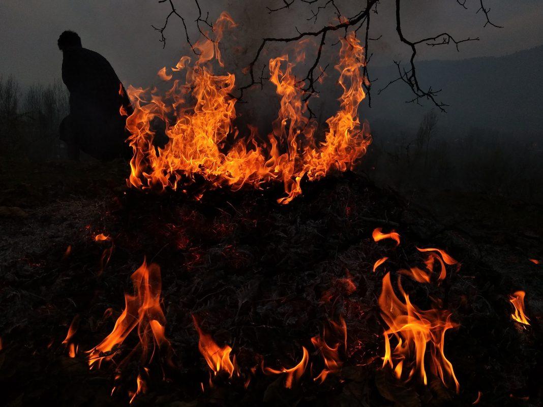 fire mt wilson observatory bobcat fire