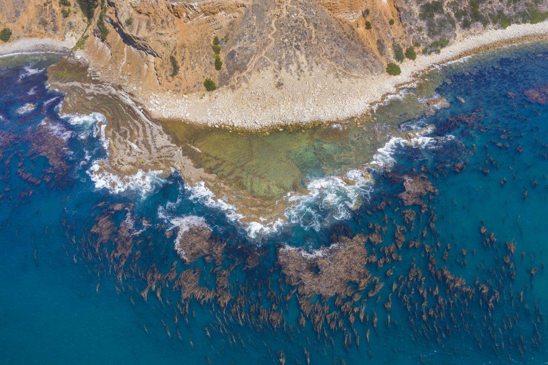Palos Verdes Coast ocean beach ddt dumping site