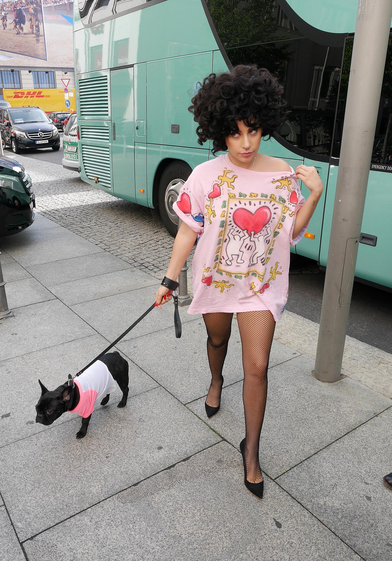 lady gaga dogs