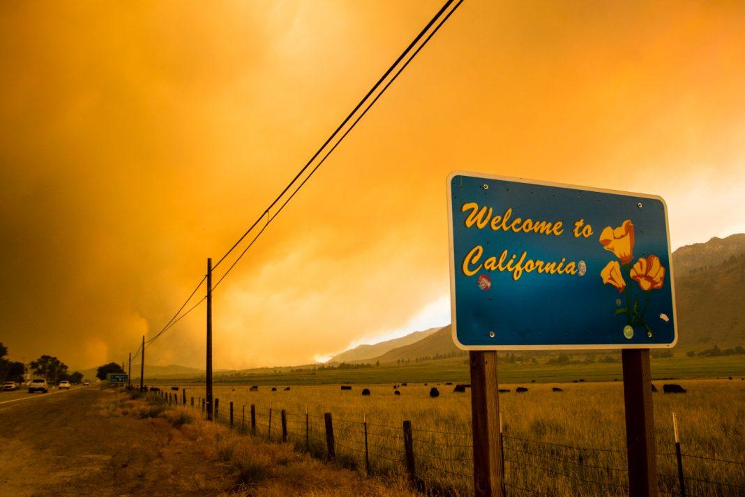 wildfire tamarack fire